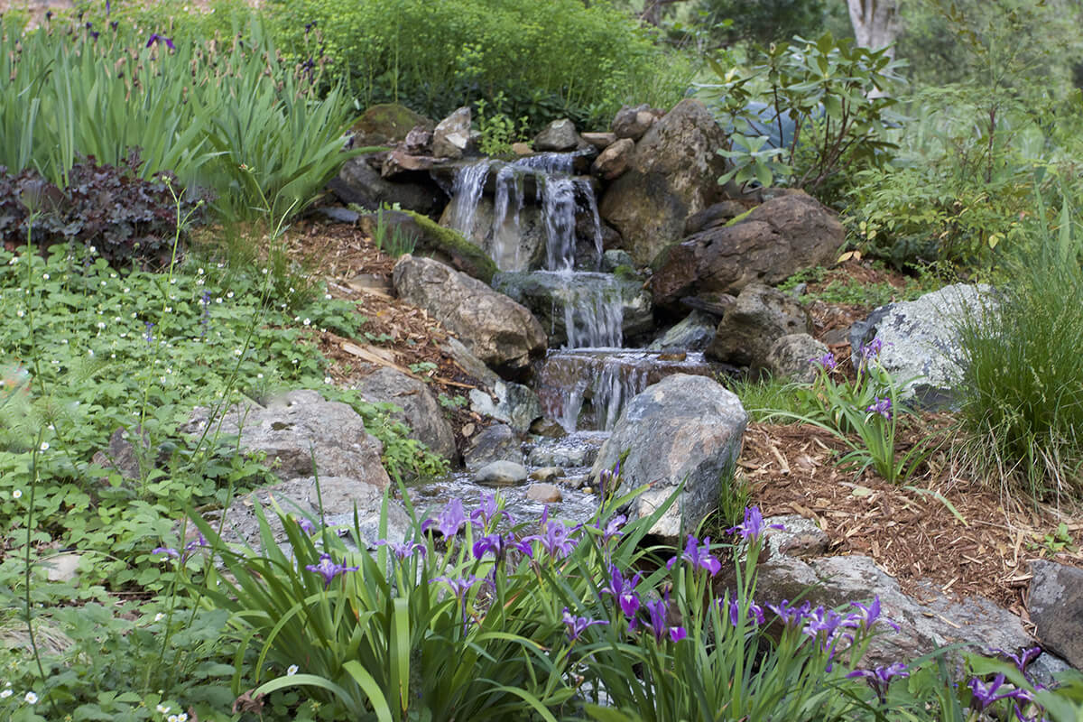 Pondless Waterfalls and Streams